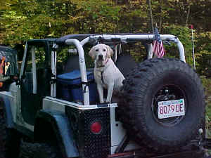 hero-jeeping.jpg (50276 bytes)